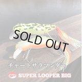 Line Slack ラインスラック SUPER LOOPER BIG スーパールーパービッグ